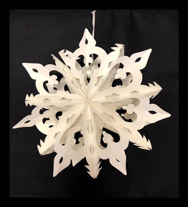 Small Snowflake 1