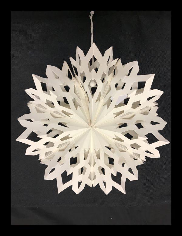 Small Snowflake 2
