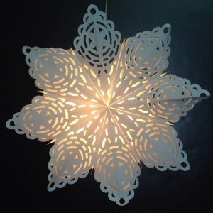 Snowflake LG 1
