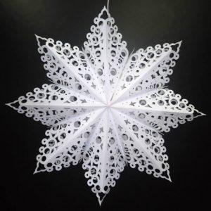 Snowflake LG 3